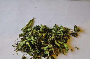 yua-triumph-tea-1